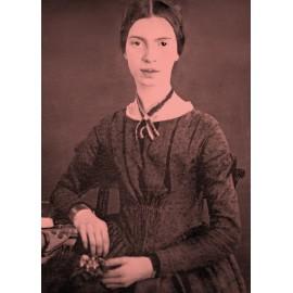 Emily Dickinson in immagini e parole